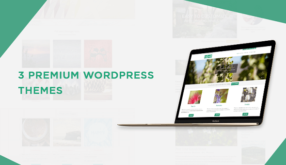 Download Nulled 3 Premium Responsive WordPress Themes Free ...